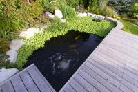 Ponds require a lot of oxygen, particularly in the heat of Summer