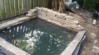 This small formal pond was build in 2013 and houses a few koi and goldfish