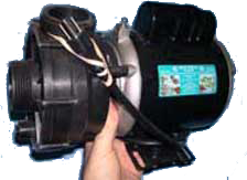 dolphin ampmaster pump