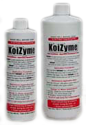 koizyme for ponds